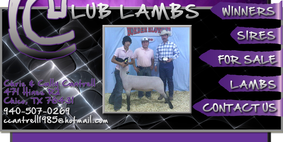 Cantrell Club Lambs